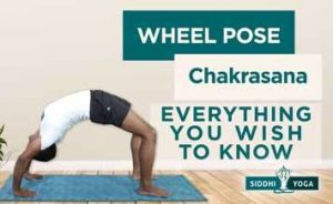 wheel pose chakrasana upwar