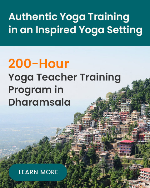 yoga program dharamshala