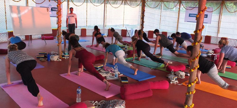 200 hour hatha yoga teacher training