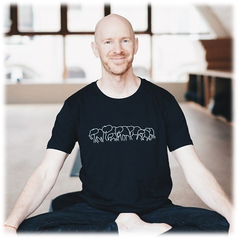 the best yoga training programs in denmark and the benelux countries