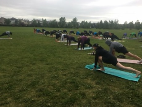 the best yoga in canada