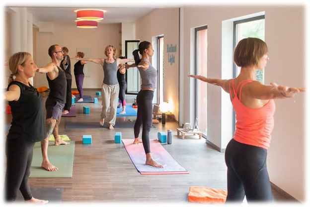 the top yoga teacher training schools in denmark and the benelux countries