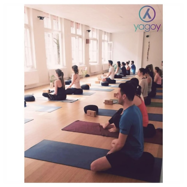 the best yoga training in denmark and the benelux countries
