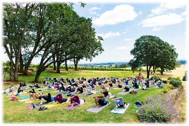 top yoga training schools in portland