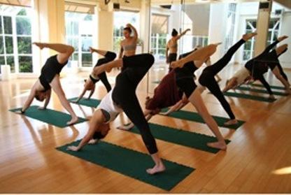 best yoga training in sf bay