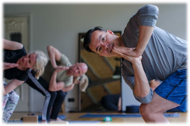 the best yoga training schools in denmark and the benelux countries