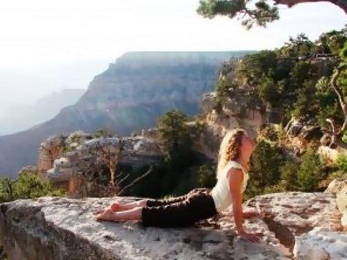 online yoga teacher training programs