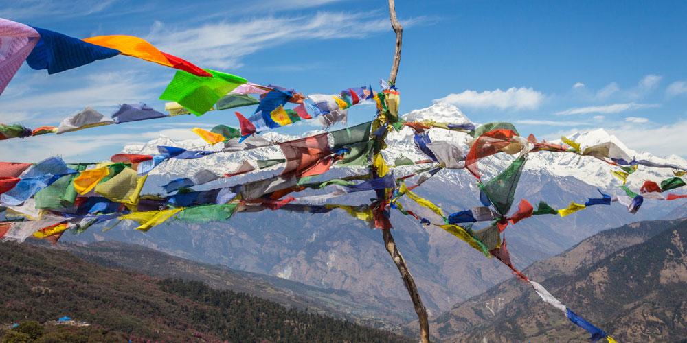 travel dharamsala