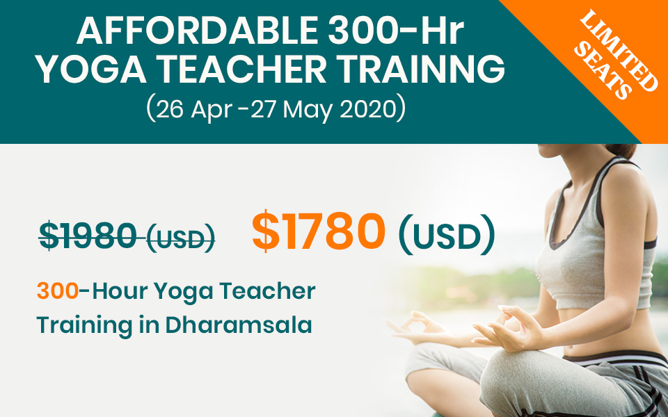 300 hr yoga training dharamsala2020