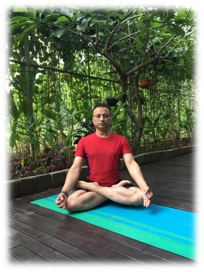 the best yoga teacher trainings