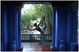 yoga teacher trainings programs sweden and norway