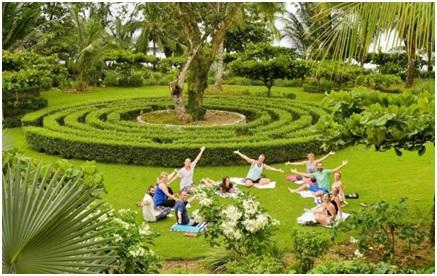 best yoga training in costa rica