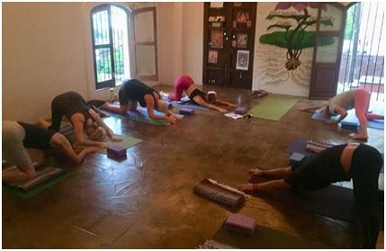 best yoga training program mexico