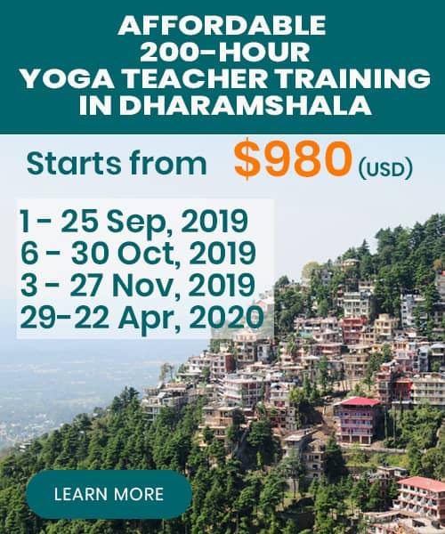 yoga teacher training dharamsala
