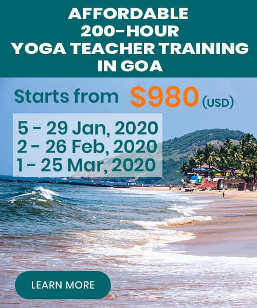 yoga teacher training goa