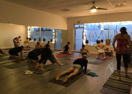 best yoga teacher training in florida