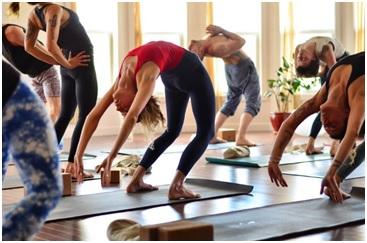 best yoga teacher training programs in edmonton