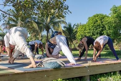 best yoga teacher training programs in florida