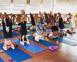 best yoga training programs hawaii