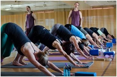 yoga teacher training edmonton