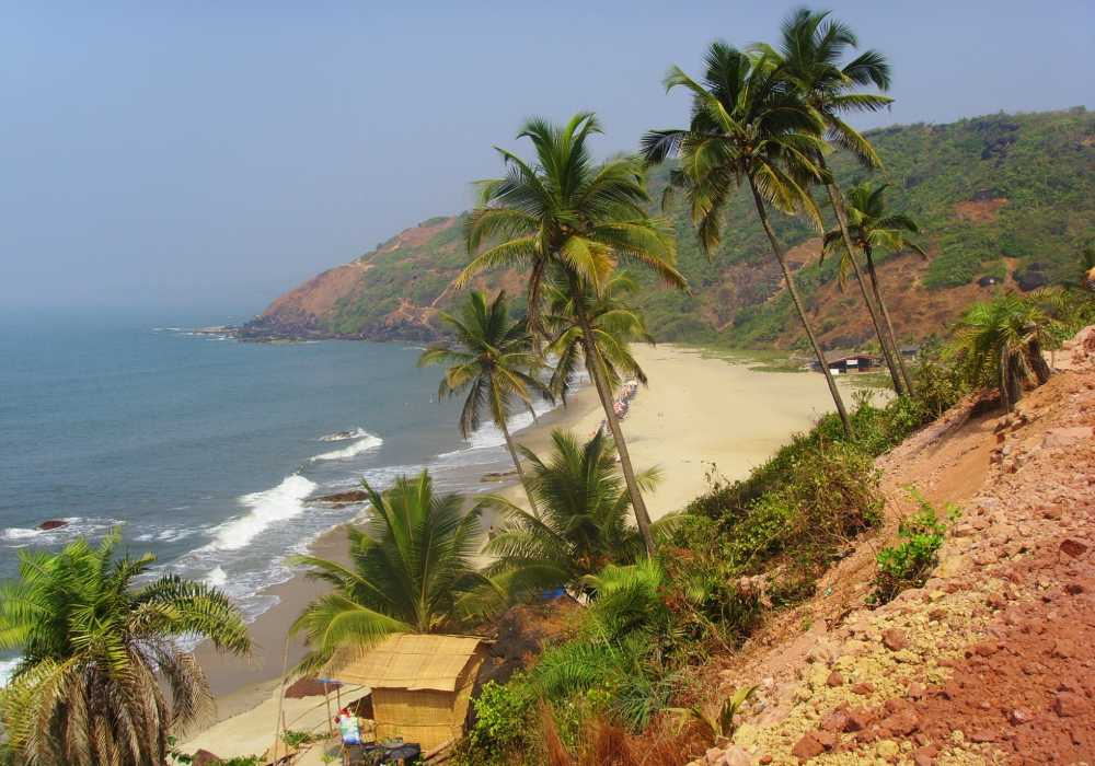 arambol beach north goa