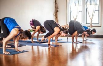 best yoga teacher training in maryland