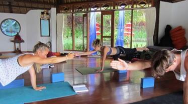 best yoga teacher training in new zealand