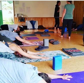 best yoga training programs new zealand