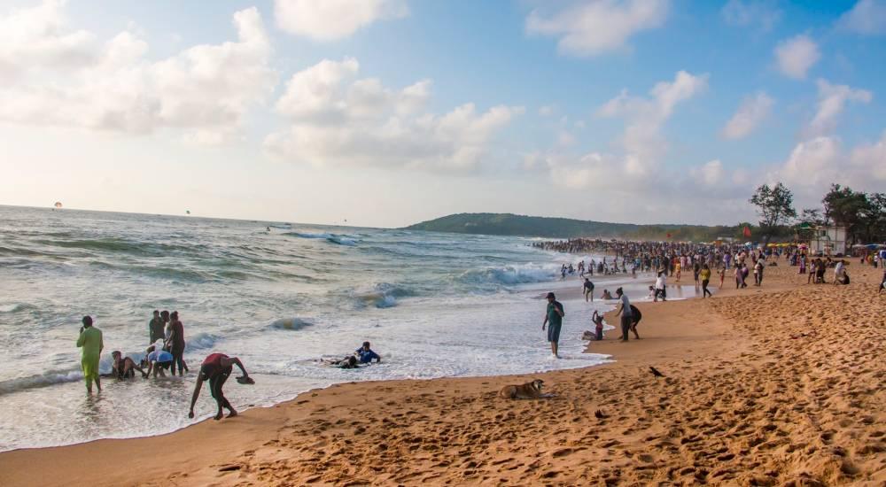 calangute beach north goa