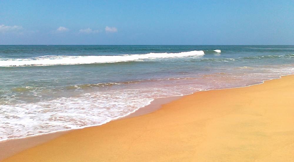 candolim beach north goa