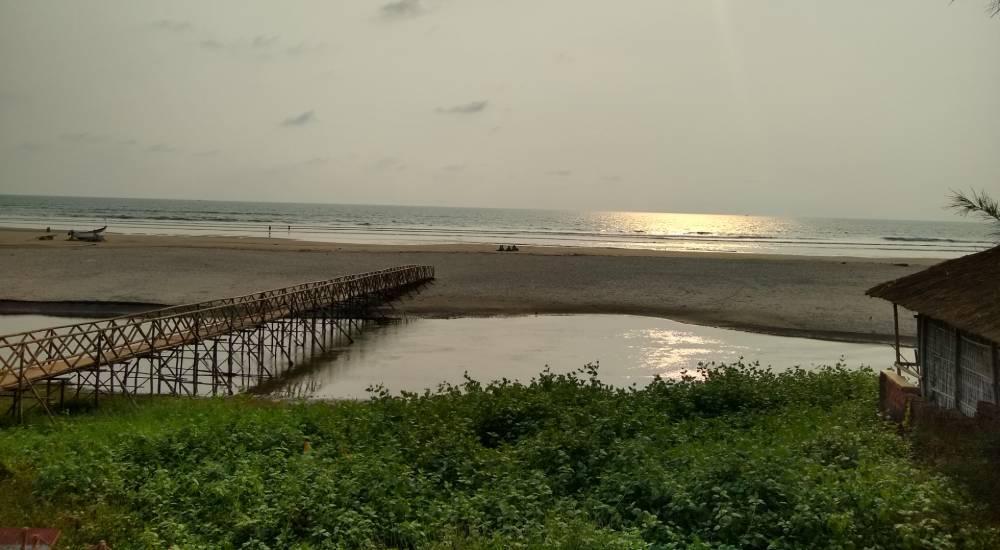 mandrem beach north goa