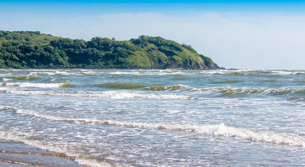 morjim beach north goa