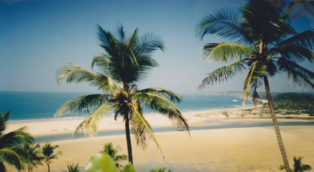 querim beach north goa