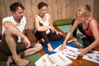 yoga teacher training in new zealand